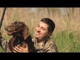 Охотничий пес ! Павел Салаш ! Новый клип на авторскую песню ! best hunting dog Шансон !