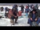 На рыбалку пойду! - прикольный клип с превращением русалки в морскую звезду.