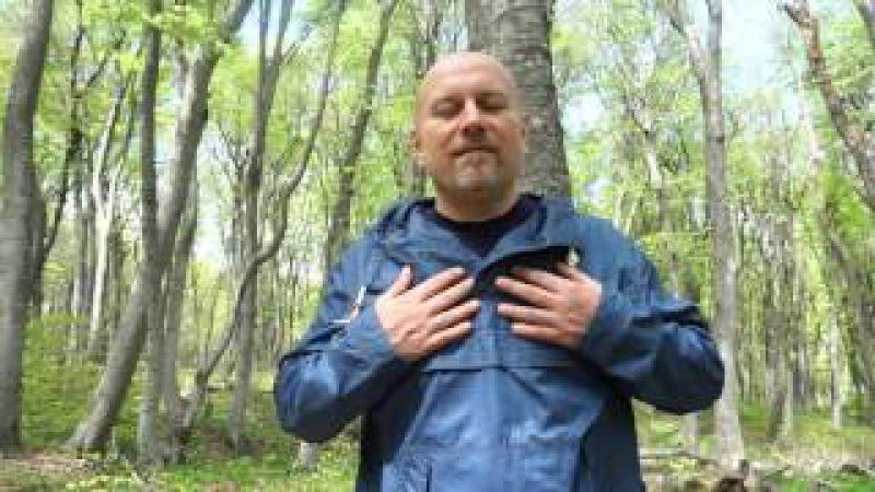 внутренняя улыбка Сергей Олли