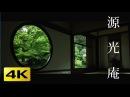 4K 源光庵 悟りの窓・迷いの窓 京都の庭園 Genko an Temple 4K The Garden of Kyoto Japan