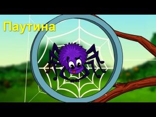 Профессор Почемушкин - Откуда паук берет свою паутину