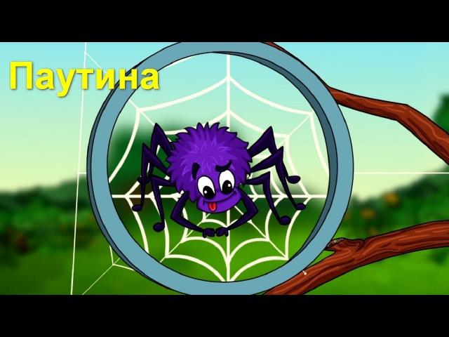 Профессор Почемушкин - Откуда паук берет свою паутину?
