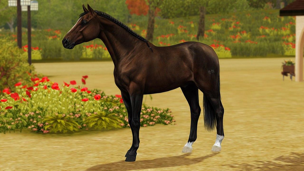 Регистрация лошадей в RHF 2 - Страница 37 NbeK8CiqA1k