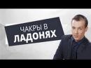Николай Пейчев Практика расктытия чакр в ладонях Академия Целителей