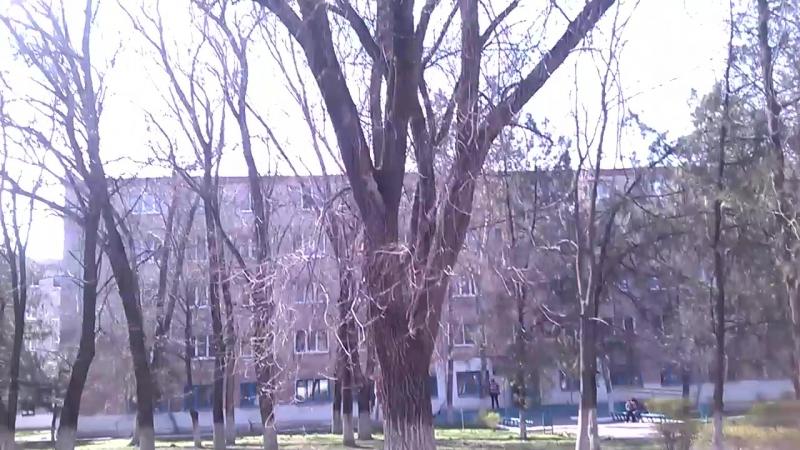 Весна...белочки в Персиановке