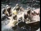 Krempoli - 04 Das Baumhaus (1975)