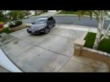 Девушки за рулем (Vine Video)