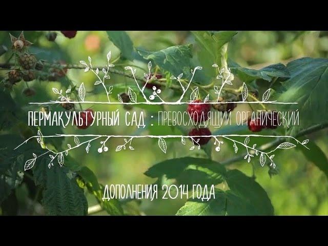 Пермакультурный сад 2014 (Вопрос-ответ со Стефаном Собковиаком)