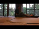 Thai Massage demo at Kourin-in Temple in Tokyo, with Sebastian Bruno