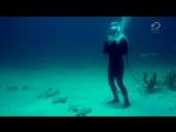 Разрушители легенд (MythBusters) - 13 сезон 235 серия (2015)