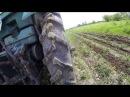 Трактор ЮМЗ Прополка картоплі GoPro