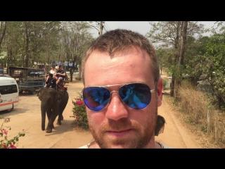 Слоняры