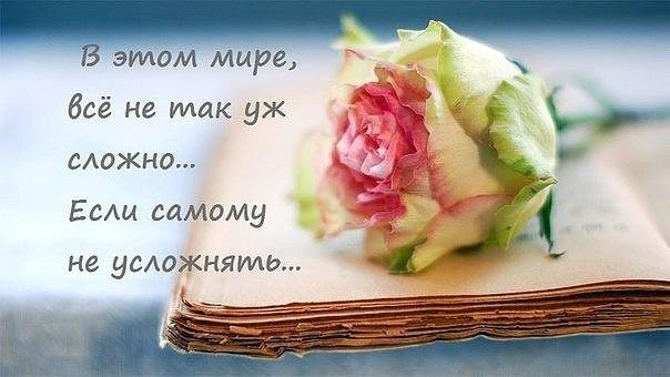 https://pp.vk.me/c633631/v633631577/10f66/miD02jedJ8o.jpg