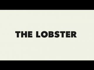 Трейлер фильма Лобстер (2015) | smotrel-tv.ru