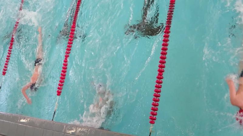 Заплыв №4. 2003-2004. Первенство ВОВИС по плаванию. 23.04.2016