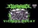 Decomposition Of Entrails - Vicious Decay (2015) Full-EP