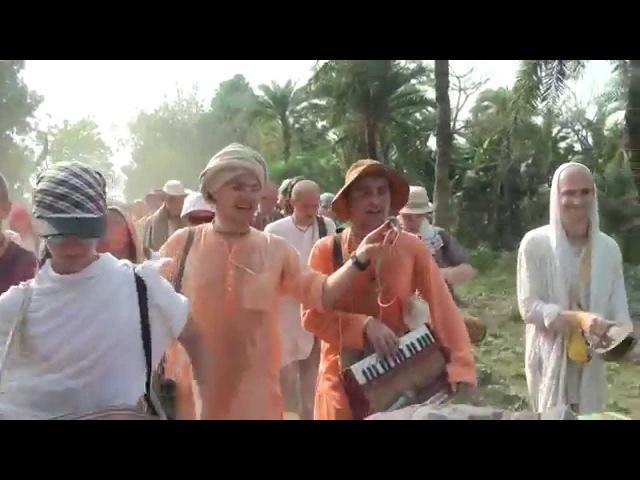 Шри Маяпур Дхама. Навадвипа-мандала парикрама, 4-й день. 25.02.2015, харинама 3