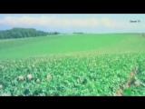 Тайны мира с Анной Чапман. Битва за еду (15.10.2015) HD