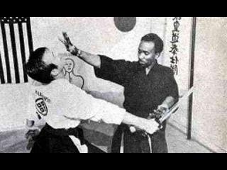 Ниндзюцу Кога-рю (Ninjutsu Koga-ryu)