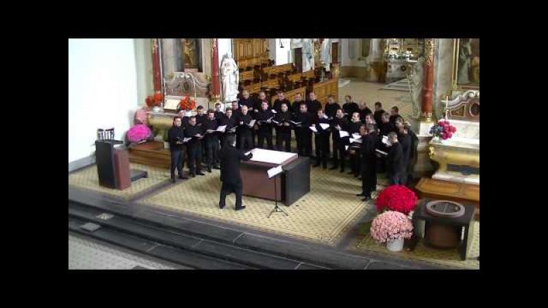 Trinity Cathedral Choir Concert in Engelberg, Switzerland (Part 1)