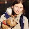 Дрессировка, коррекция собак в Праге. Передержка