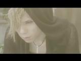 Acid Black Cherry 「イエス」PV