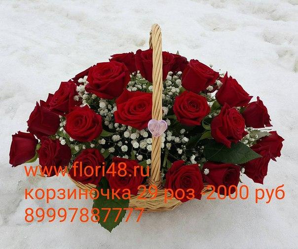 Xnh3nkaLN9A.jpg