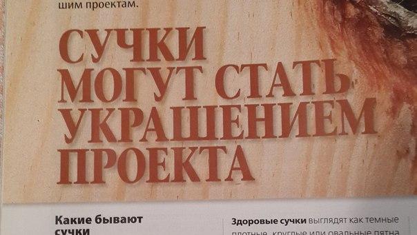 Фото №420402402 со страницы Вадима Омельяненко