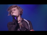 Acid Black Cherry - CRISIS (TOUR 『2012』)