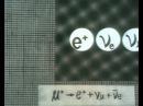 Взаимодействие элементарных частиц 1970