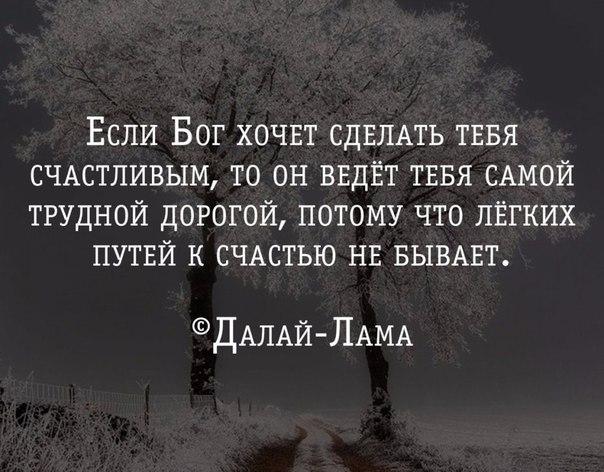 https://pp.vk.me/c633720/v633720966/dc4b/d5fQLafj5ro.jpg