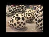 Experience ClayJenni Ward, Clay Artist, Ceramics and Pottery