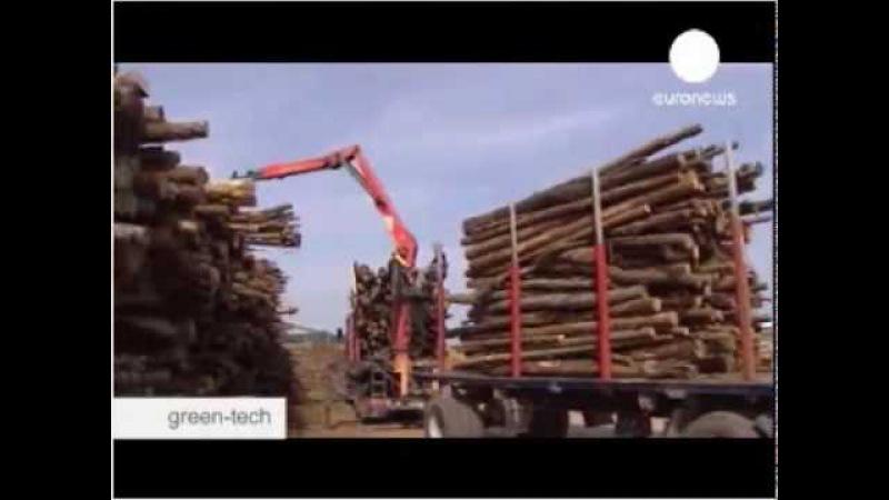 Природный газ, воск, мазут, бензин из древесины