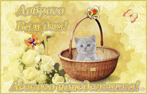 http://cs633721.vk.me/v633721206/135fe/gAopDTWbG0Y.jpg