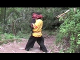 Pencak Silat Harimau Singgalang by Haji Syofian Nadar 02