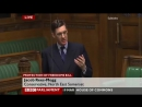 Jacob Rees-Mogg on the rights and liberties of the individual (19 March 2012)
