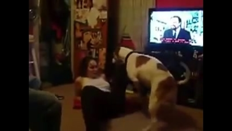 Her own wife fucking with the dog - zoo fucking sexzoo.