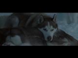 Белый плен (2006) HD 720