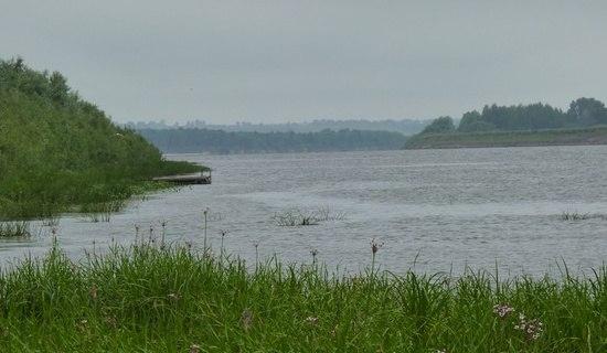влияние уровня воды на клев рыбы