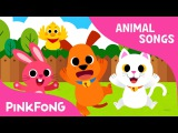 Baby Animals  Animal Songs  PINKFONG Songs for Children