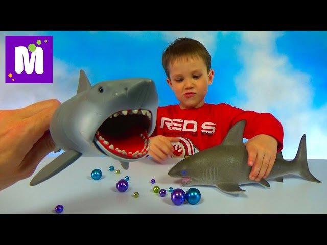 Акула растущая в воде и игрушечная акула Челюсти выращивание в воде Toy Shark Jaws growing...