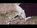 Плотина Хетч Хетчи Hetch Hetchy Dam в Парке Йосемити Yosemite NP USA
