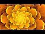 Solar Plexus Chakra Balancing & Healing Meditation Music