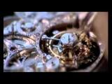 Breguet   шикарная реклама часов