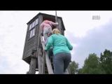 Беловежская пуща: первозданный лес / 2015 / HD 720p