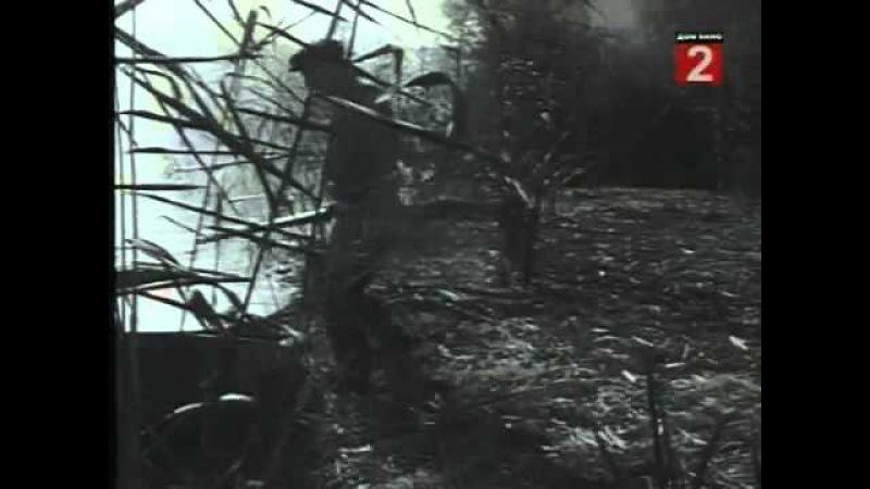 Выстрел в тумане 1963)