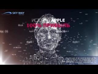 Лучший отзыв о Sky Way, на примере APLLE RSW systems, TransNET альтернатива Ж Д Новый транспорт