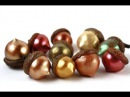 Поделки из орехов и шишек Crafts made from nuts and cones