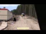 Как он убегал от медведя ....