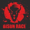 BISON RACE
